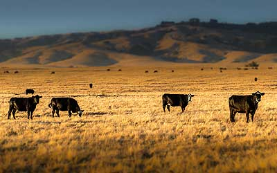 idaho-ranches-for-sale